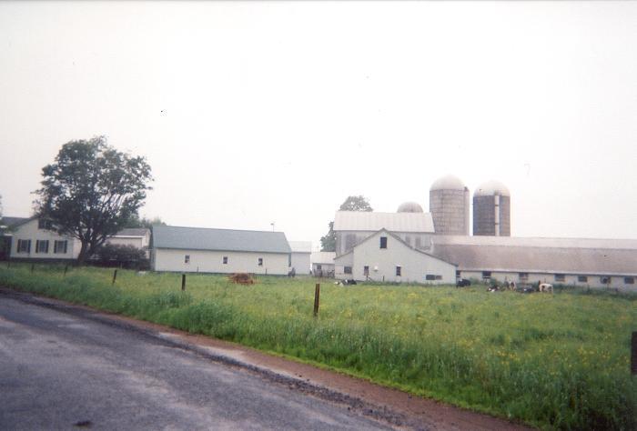Farm #41 - Lewis County, NY